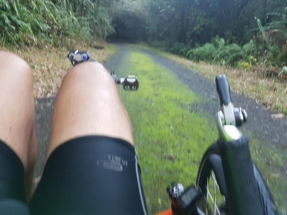 Forêt de Marelongue à Saint Philippe Balade sportive en vélo-couché Ile de la Réunion