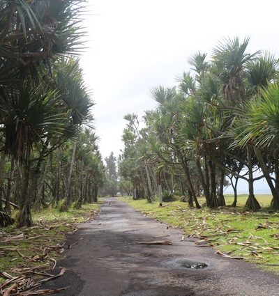 vélo-couché Atmosphère Péi Ile de la Réunion Loisirs sportifs innovant insolites