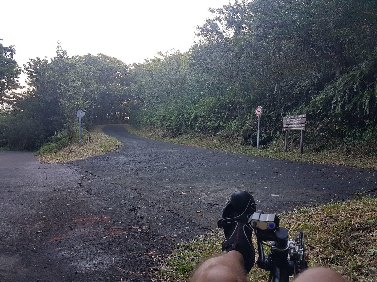 Balade à Saint Philippe forêt de Marelongue Ile de la Réunion